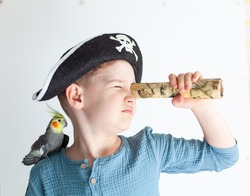 Boy in a pirate hat with a parrot on his shoulder, child actor in the role of a pirate, children's theater club, boy actor