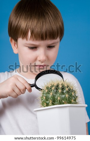 Boy looking through a magnifying glass on a cactus on a blue background