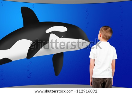 boy looking through a window on killer whale