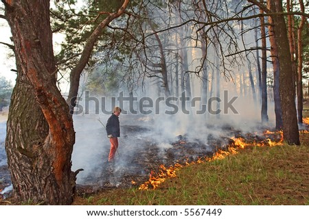 Boy looks at forest fire. Shot in pine forest park, Ukraine.