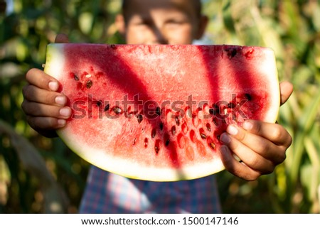 boy of 8 years old stands on a corn field in the village and holds a large piece of watermelon, the sun is shining in his eyes, a close-up of a juicy watermelon #1500147146