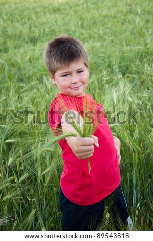Boy on a green field of wheat, the summer survey - stock photo