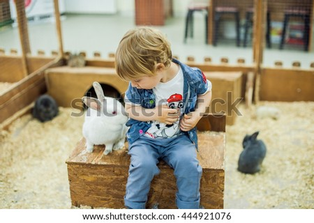 Boy play with the rabbits in the petting zoo #444921076