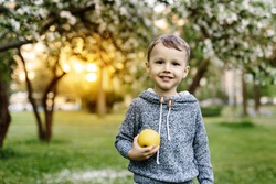 boy playing on the glade among the apple trees