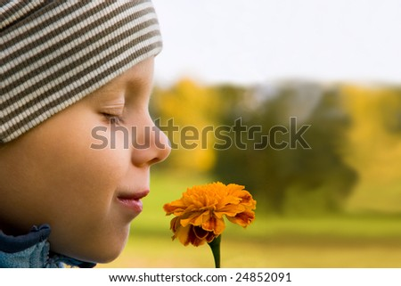 Boy smelling flower in autumn day. Focus on flower.