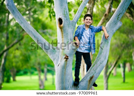 Boy standing on a branch on the tree in park