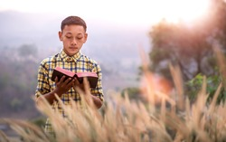 Boy standing reading Bible off God in the meadow in the evening sunset, Young Christian concept.