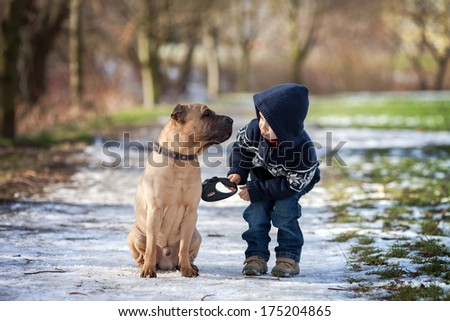 boy with cute dog  giving him a ...