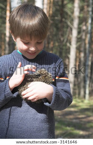 boy with pet. Little  hedgehog and boy in the forest