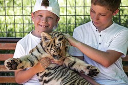 Boys holding their small tiger cub