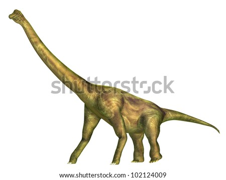 Brachiosaurus Computer generated 3D illustration