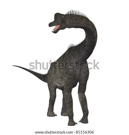 Brachiosaurus 01 - The Brachiosaurus dinosaur was a sauropod from the Jurassic Period. Its forelimbs were much longer then its hind limbs giving it the look of the modern giraffe.