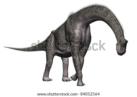 Brachiosaurus  walking  full body view A genus of sauropod dinosaur from the Jurassic Morrison Formation of North America.  Isolated illustration. Clip art cutout