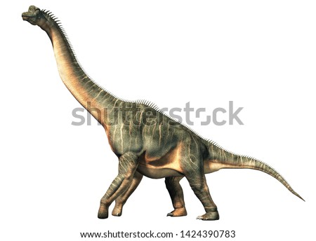 Brachiosaurus was a sauropod dinosaur, one of the largest and most popular. It lived in during the Late Jurassic Period. On a white background. 3D Rendering