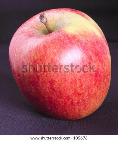 braeburn apple for the teacher