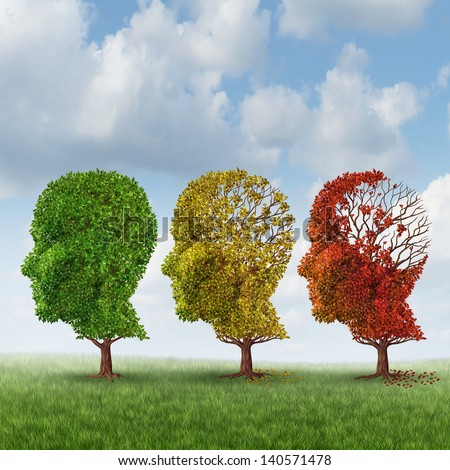 """memory loss and aging An international team says it has described a new mechanism involved in  memory loss associated with aging their study (""""age-related shift."""