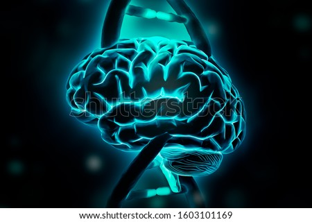 Brain and DNA double helix strands 3d rendering illustration. Intelligence, genome, genetics, cognition, memory, psychology, neuroscience concepts.
