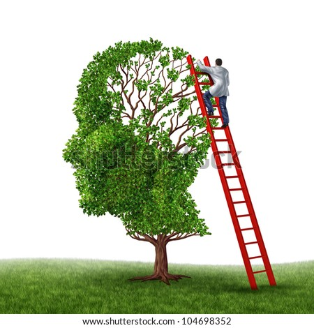 Brain and memory medical exam with a doctor on a red ladder climbing high to inspect a human head shaped tree as a symbol of dementia disease prevention and cure research on a white background.