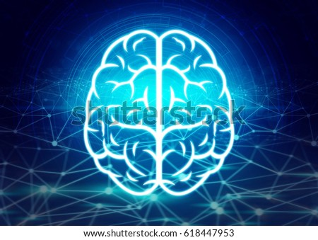 brain and network