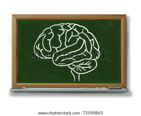 Brain chart diagram on a blackboard representing the education of neurological and human medical health issues. - stock photo
