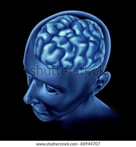 brain head seen through skull