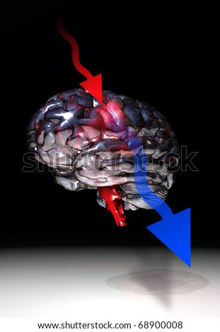 brain illustration with two arrows in red and blue color
