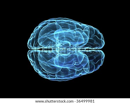 Brain model xray blue look isolated on black background - top view