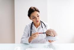 Brain Surgeon Or Neurologist Doctor Explaining To Patient