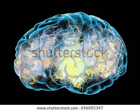Brain, synapses, neurons, degenerative diseases, Parkinson's, Alzheimer's, 3d rendering. Synapse connections in the brain
