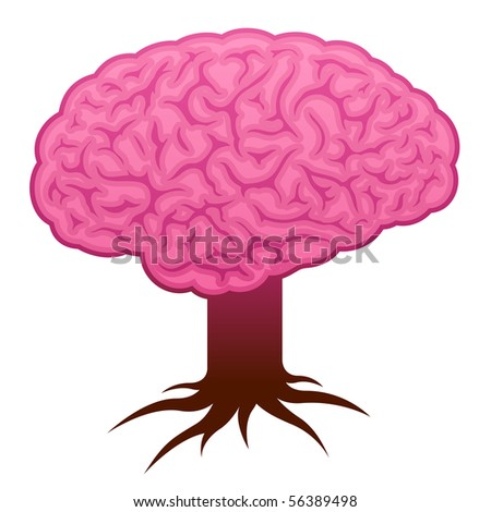 Brain with stem and roots