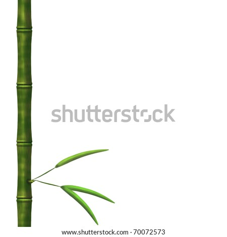 Branch of a bamboo with leaves on a white background --------------------------- ????? ? ????? ???????????? ???????? ?? http://blog.translate.ru