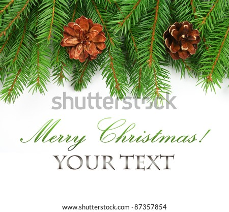 Branch of Christmas tree border and pine cones on white background