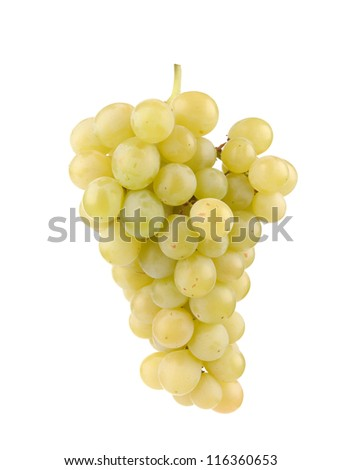Branch of green grapes isolated on white