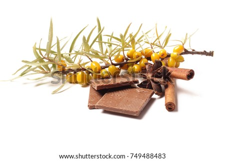 Branch of sea-buckthorn berries with cinnamon, cloves and chocolate on a white background. berries, yellow, tree,leaves, green, branch, brown, medicinal plant, cloves, cinnamon chocolate spice sweet