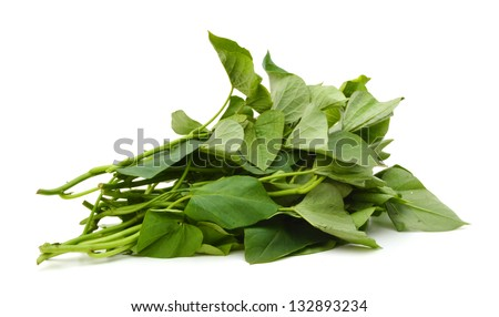 Branch Of Sweet Potato Leaves Belacan Yam Leaf Stock Photo 132893234 ...