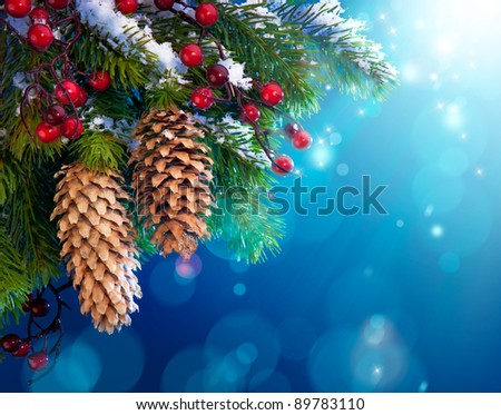 branch of the snowy Christmas tree on night  blue background - stock photo