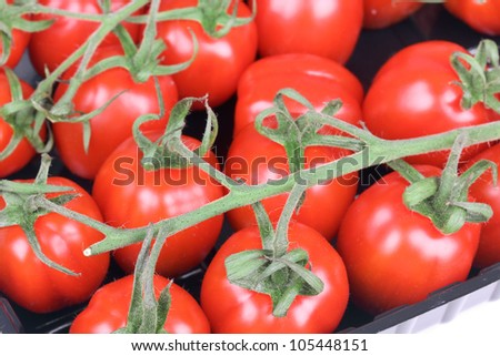 Branch of tomato cherry in packing, macro shot