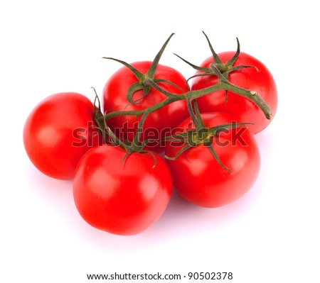 branch of tomato isolated on white background