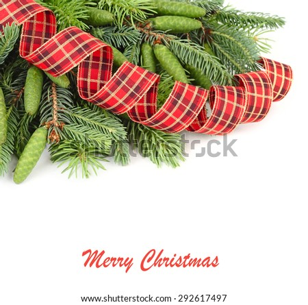 Branches of a Christmas tree with green cones and a spiral checkered tape on a white background. A Christmas background with a place for the text.