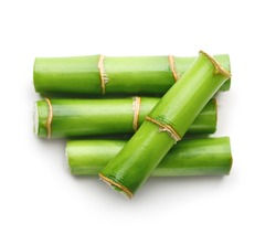 Branches of bamboo isolated on white background