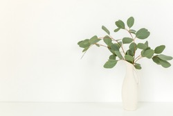 Branches of eucalyptus in vase on table on light background. Home decor. Blog, website or social media concept .
