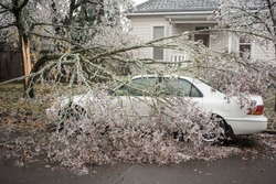 Branches of ice trees fell on a car by house background