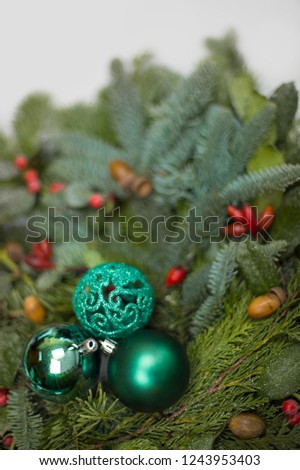 Branches of Nordmann fir, blue spruce, and conifers lie in a bundle. Red berries and acorns as a contrast to the green picture.