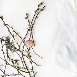 Branches of pussy-willow and rose isolated on white. Flat lay