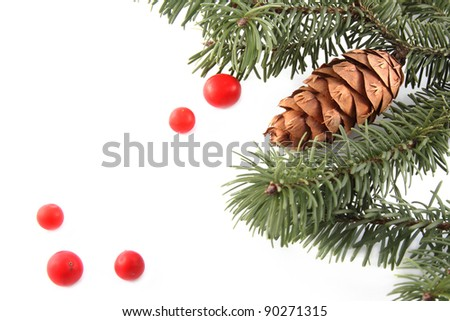 Branches with cone and festive red berries as  background