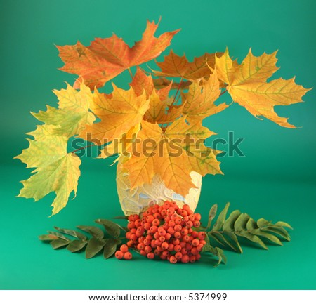 Branches with multi-coloured autumn leaves in a vase and an ash-berry.