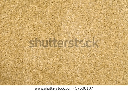 Brand new shag carpet.  Can be used as a background for any cleaning or installation inference.