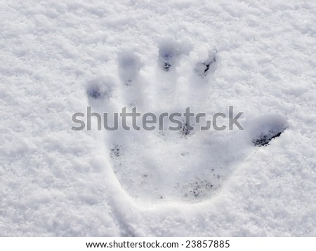 Brand of hand in the snow