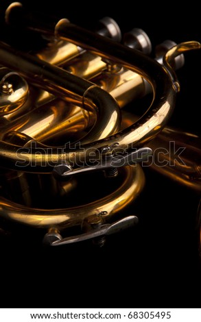 brass trumpet horn on a black background. soft light photograph.