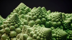 Brassica oleracea, Romanesco broccoli also known as Roman cauliflower, selective focus
